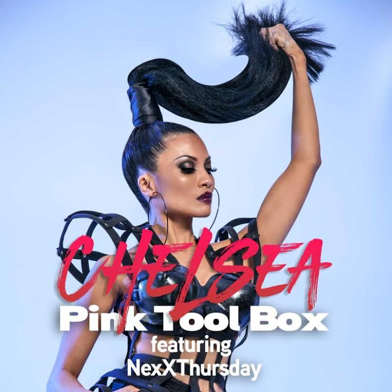 Pink Tool Box Cover